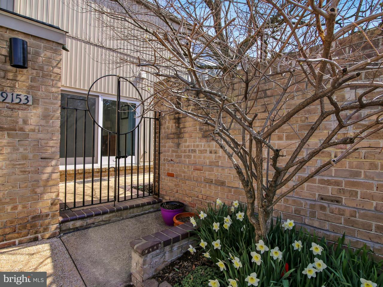 Single Family for Sale at COURTS OF WHESTONE, 19153 Brooke Grove Court Montgomery Village, Maryland 20886 United States