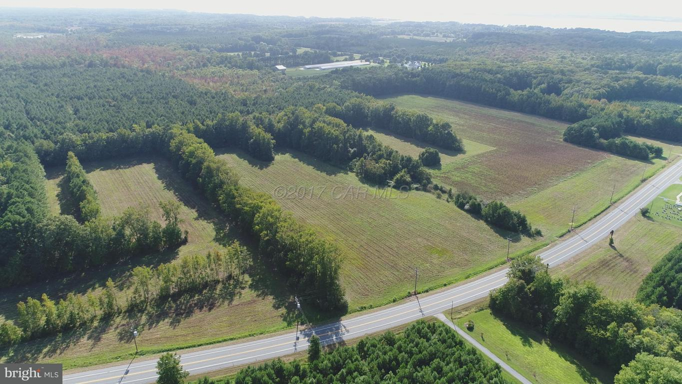 Other Residential for Sale at 0 Nanticoke Road Tyaskin, Maryland 21865 United States